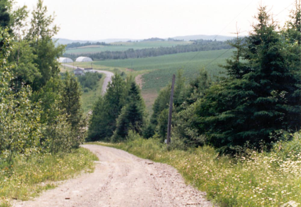 The Eastern United States: Farming in Aroostook County