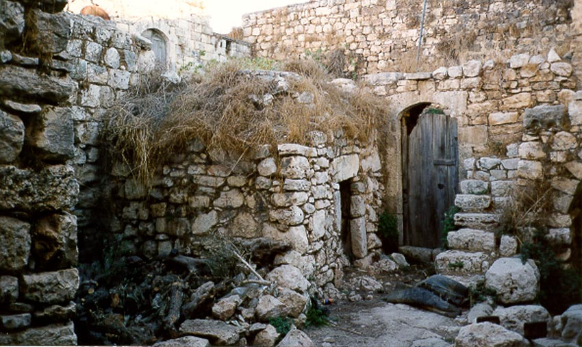 The West Bank: Deir Istiya and Salfit