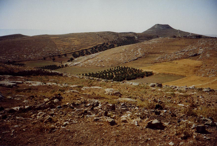 The West Bank: Southern Countryside