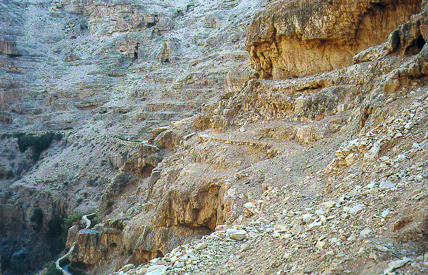The West Bank: Wadi Qelt and Ein Sultan